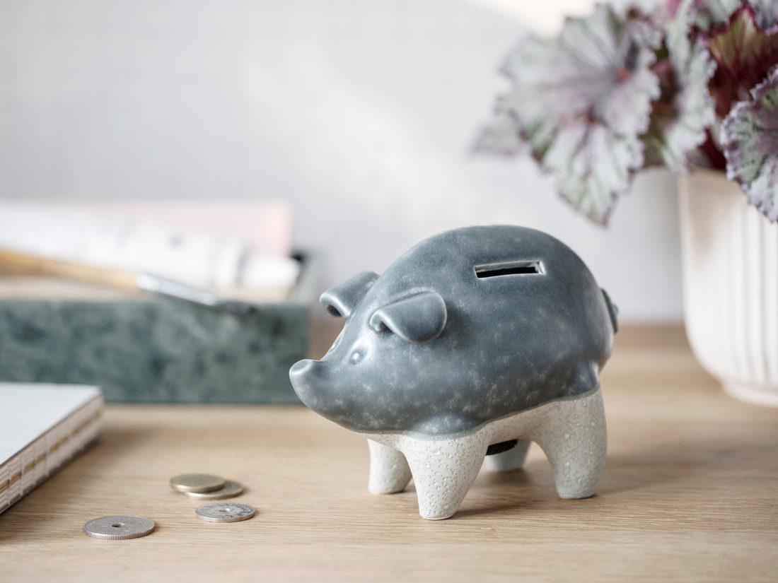 SPAREDYR Pig