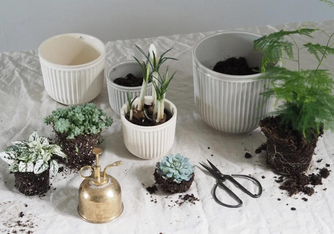 HAMMERSHOI Flowerpot Ø11, Unglazed